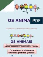 animais.pptx