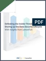 Defeating Insider Threat Survey