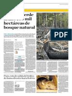 El Perú Pierde Al Año 150 Mil Hectáreas de Bosque Natural