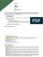 Plan de Aula Emprendimiento Psicologia 2017 01