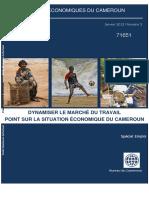 Cahier Economique Du Cameroun Special Emploi v2