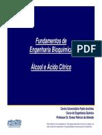 FEB - 12 - Álcool e Ácido Cítrico - REV04.pdf