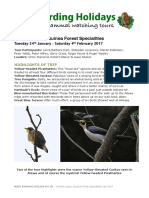 GHANA, UPPER  GUINEA FOREST SPECIALITIES, JAN/FEB 2017