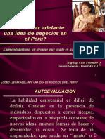 Idea de Negocio en El Peru (1)