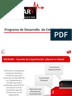 EJEMPLO de Programa de CAPACITACION Escalar - Malla Curricular v1107