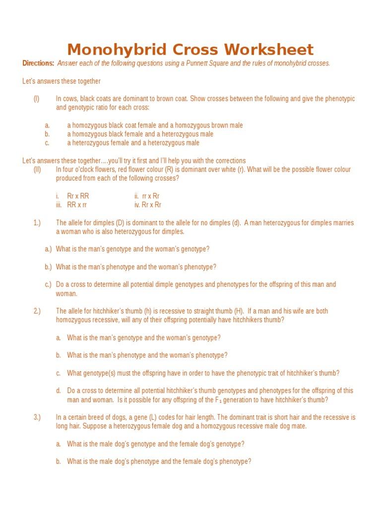 Monohybrid Cross Worksheet - Kidz Activities