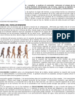 Evolucion Del Hombre, Teorias Creacionista y Evolucionista