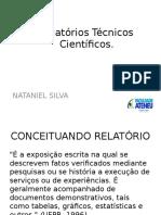 Relatórios Técnicos Científicos (2)