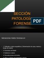 Parte III Seminario de Generalidades de La Medicina Legal