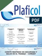 Diapositivas Comites.pptx