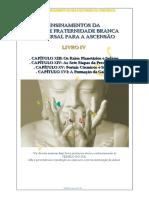 Portais Estelares.pdf