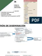 Histopatologia-Escrutinio