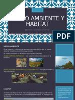 Medio Ambiente y Hábitat