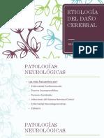 3. ETIOLOGÍA DEL DAÑO CEREBRAL