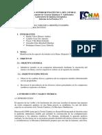 Informe - Lab de Inorgánica