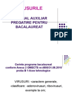 0 Virusuri Pregatire Bac
