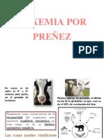 Toxemia en Preñez