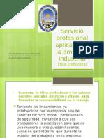 Servicio Profesional Aplicado en La Empresa Industrial