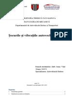 254694949-Socurile-Si-Vibratile-Autov.docx
