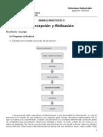 TPN4 Percepción y Atribución