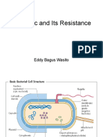 Antibiotic and Its Resistance
