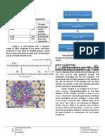 Trans - Pancreas - Dr. Valerio