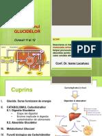 Catabolism Anabolism GLUCIDE
