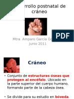 Desarrollo postnatal de cráneo (1).pptx