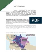 El Narcoterrorismo en El Perú
