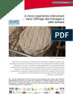 MICROFLORE - Les Micro Organismes Dans Affinage Des Fromages à Pâte Lactique