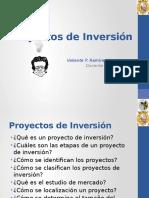 10. Proyectos de Inversión