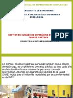 31032014_COMPETENCIA_DE_ENFERMERIA_CANCER_GASTRICO_2014.pdf