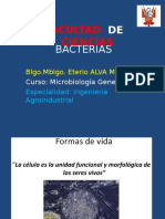 Bacterias CLASE 2.ppt