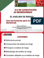 Analisis de Riesgo-ERivas