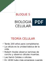 Bloque 5.1bgu.