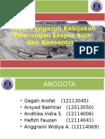 Snbb 2016 - PPT Final Kebijakan Tambang Pelarangan Ekspor