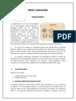 Word Fagocitosis (1)