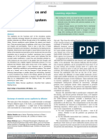 Capillary Dynamics and the Interstitial Fluidelymphatic System
