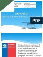 SERNAPESCA.pptx (1)