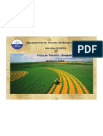 FT_Agricultura_9A (1)