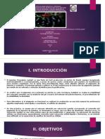 Presentación1 Jambolao Extraccion de Pigmentos