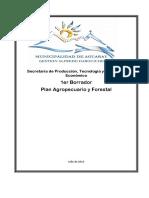 Plan Agropecuario Aguaray Borrador