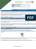 Formato_Entrega_Mapa_Mental (1)