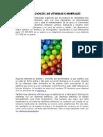 Clasificacion de Las Vitaminas Minerales Proteinas Grasas