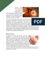 Fecundación, El Embarazo, Los Sintomas Del Embarazo y Los Cambios Fisiologicos y Sicologicos }