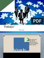 Work_plan 2015 3.0 Manual Stdr
