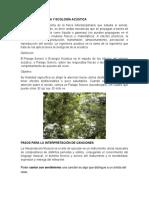 Que Es La Acústica y Ecología Acústica