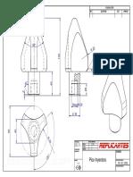 Pico Inyectora.pdf