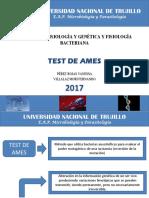 TEST DE AMES