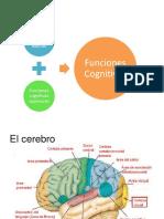funciones cognitivas basicas